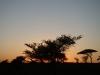 P. N. Serengueti